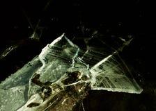 Lodowy i śnieżny świat zdjęcie royalty free