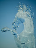 Lodowy koń Fotografia Royalty Free
