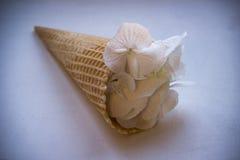 Lodowy kwiat Ślubny skład Obrazy Royalty Free