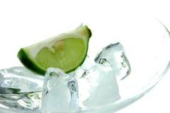 lodowy Martini zdjęcia stock