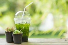 Lodowy zielonej herbaty matcha Obraz Royalty Free