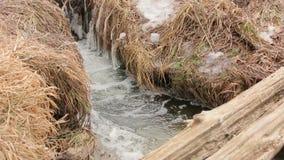 Lodowy zimy wody strumień zbiory wideo
