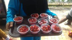 Lody truskawka przy Agro technologia parkiem w MARDI Cameron średniogórzach Malezja Fotografia Stock