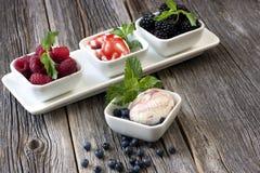 Lody z świeżymi malinkami i czarnymi jagodami Fotografia Stock