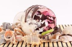 Lody z Seashells Obrazy Royalty Free