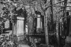Lodz Cementary ebreo Immagine Stock Libera da Diritti