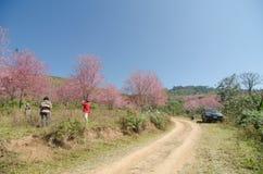 LOEI THAILAND - JANUARI 17: Turister som är lyckliga med ditt lösa besök Arkivfoto