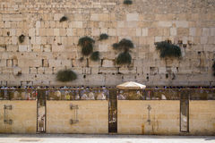 Loeiende muur Jeruzalem Israël Royalty-vrije Stock Afbeeldingen