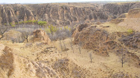 Loess hilly Royalty Free Stock Photography