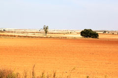 Loess landscape in Spain near Albacete. Orange and brown mowed field coloured by the soil of loess near Albacete in Spain. Loess is an aeolian sediment formed by Stock Photos