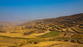 Loess Plateau farmland Stock Image