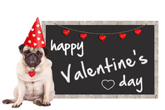 Loevel cute pug puppy dog wearing party hat with hearts, sitting next to blackboard sign with text happy valentine`s day, on white. Grumpy cute pug puppy dog Stock Photos