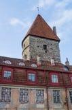 Loewenschedetoren en middeleeuws betegeld dakhuis Royalty-vrije Stock Foto's