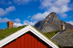 Lofoten在挪威 库存照片