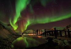 Lofoten海岛北极光极光Borealis挪威 免版税库存照片