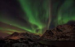 Lofoten海岛北极光-极光Borealis挪威 免版税库存图片