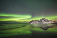 Lofoten Στοκ φωτογραφία με δικαίωμα ελεύθερης χρήσης