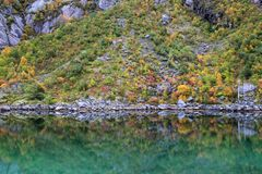 Lofoten  autumn's  mirror Royalty Free Stock Images