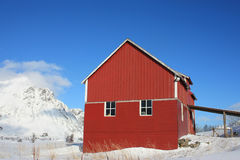 Lofoten barn and mountains. Traditional norwegian barn in Lofoten islands in winter stock photography