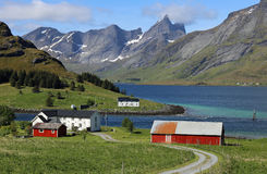 Lofoten-Bauernhof mit Fjord und Berge im Hintergrund Stockfotografie