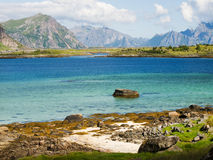 Lofoten coastal landscape Royalty Free Stock Photo