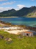 Lofoten coastal landscape Stock Photography