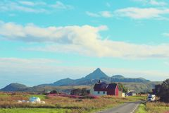 Lofoten. Farm, green, Lofoten, Norway Stock Image