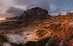 Lofoten fjord, Norge Royaltyfri Fotografi