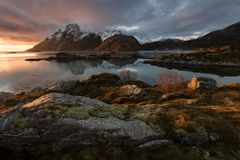 Lofoten fjord, Norway Stock Images