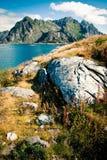 Lofoten, Henningsvaer, Noorwegen Stock Foto