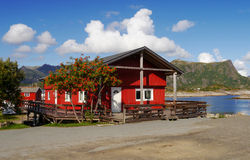 Lofoten house. Typical red wooden house on the Lofoten Islands in Norway Royalty Free Stock Photography