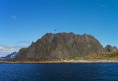 Lofoten island, north Norway Stock Image