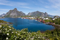 Lofoten island, Norway. Royalty Free Stock Image