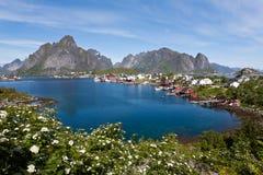 Lofoten island, Norway. Royalty Free Stock Image