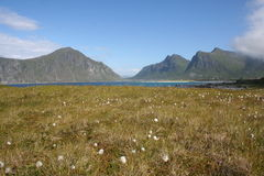 Lofoten Islands. View of a typical landscape of the Lofoten Islands, North Norway Stock Photos