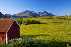 Lofoten islands Stock Images