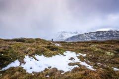 Lofoten islands. Beautiful Norway spring landscape. Royalty Free Stock Photo