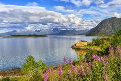 Lofoten islands landscape, Norway royalty free stock image