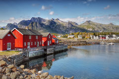 Lofoten Islands  Norway. Red rorbu-huts in the Kabelvag village. Lofoten islands, Norway Royalty Free Stock Image