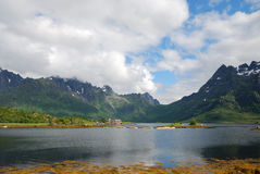 Lofoten islands in summer Stock Photos