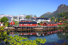 Lofoten Islands XII Royalty Free Stock Image