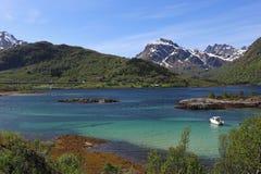lofoten krajobrazu zdjęcie royalty free