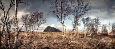 Lofoten landscape with a mountain in background Royalty Free Stock Photo