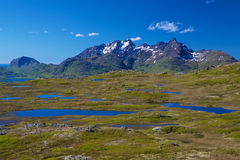 Lofoten mountains Stock Image