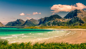 Lofoten Norway. Coast line in the north of Norway Royalty Free Stock Photos