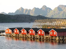Lofoten norwegian sea landscape Svolvaer Stock Photography