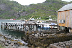 Lofoten półwysep, Norwegia Fotografia Stock