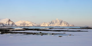 Lofoten's arctic landscape. Arctic landscape from Storfjord beach, Lofoten islands, On the background the Mount Vagakallen royalty free stock photos
