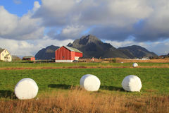 Lofoten's farm  clouds and hay bales Royalty Free Stock Image