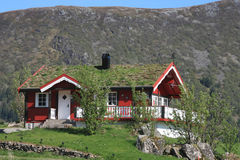 Lofoten's  house  with grass on the roof Stock Photos